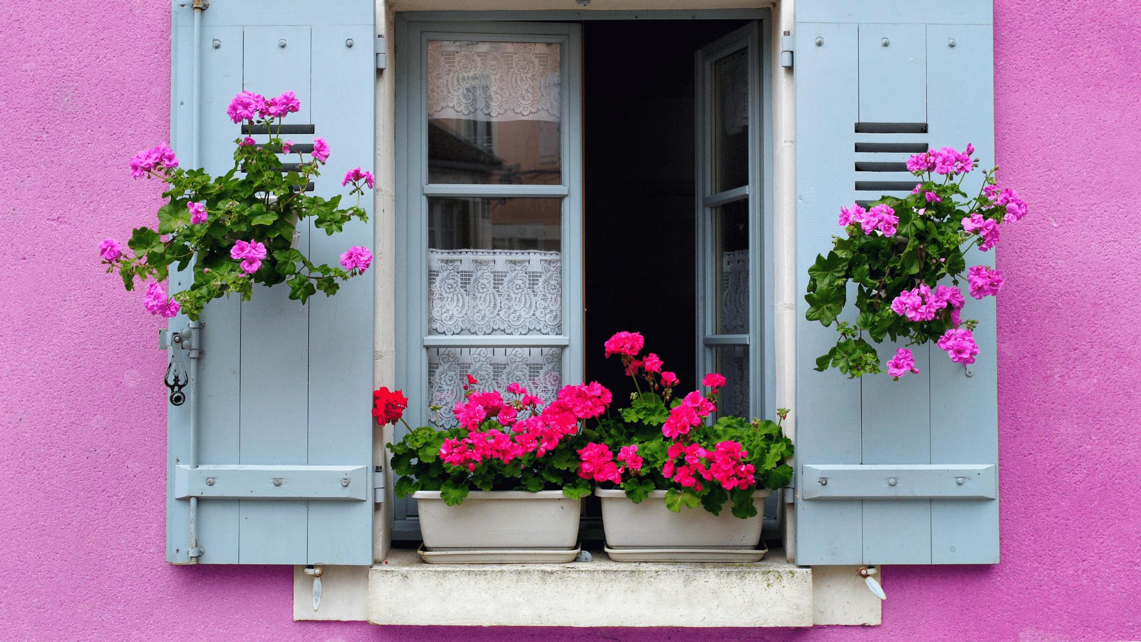 Nettoyage de vitres Bordeaux